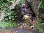 猿鬼の洞窟