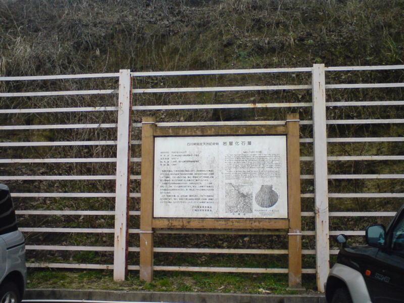 岩屋化石層