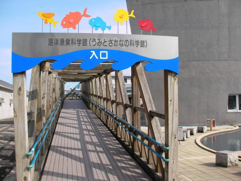 うみとさかなの科学館(石川県海洋漁業科学館)